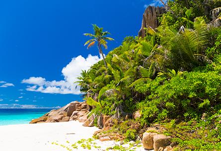 Immigration Seychelles